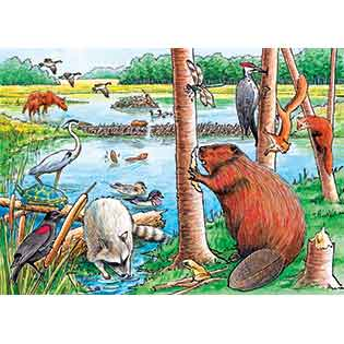 The Beaver Pond kids tray puzzles