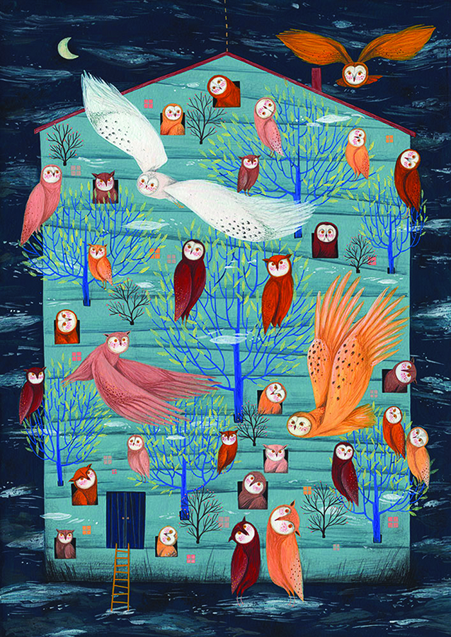 Owl House (Andrea) DToys puzzle distributed by Outset
