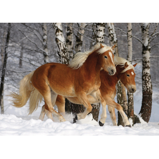 Horse Shaped Pieces - Haflinger Duo jigsaw puzzle