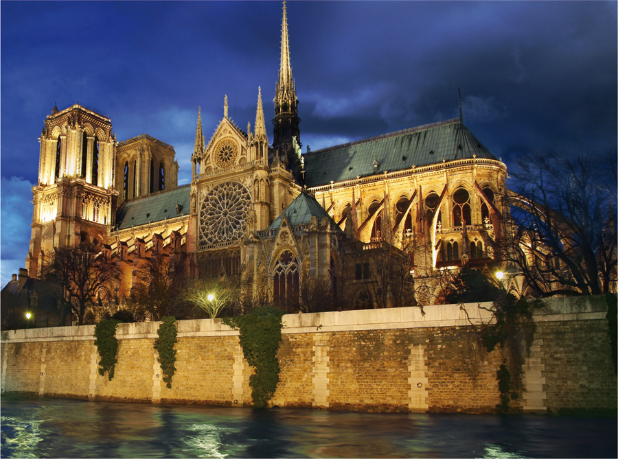 Notre Dame at Night | D-Toys 1000 piece puzzle