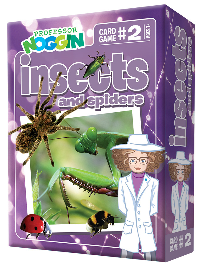 Kids Card Game | Professor Noggin Insects and Spiders kids card games