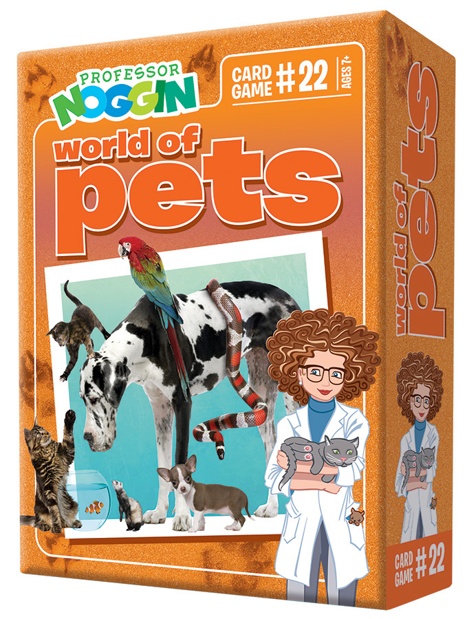 Professor Noggin Pets kids card game 2020