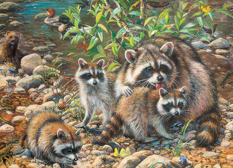 Raccoon Family 350 Family Piece puzzle by Cobble Hill