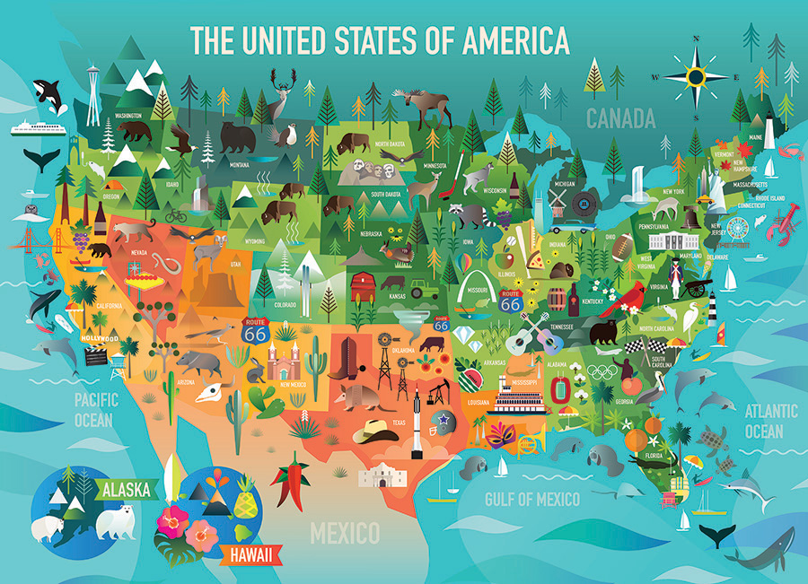 The United States of America (Family) 350 Family Piece puzzle by Cobble Hill