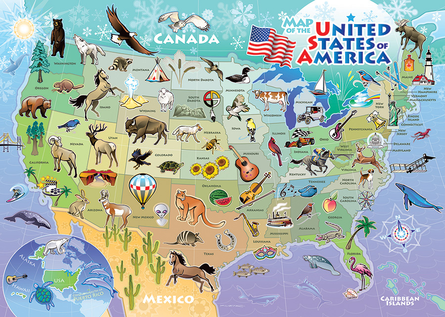 USA Map - Tray Puzzle