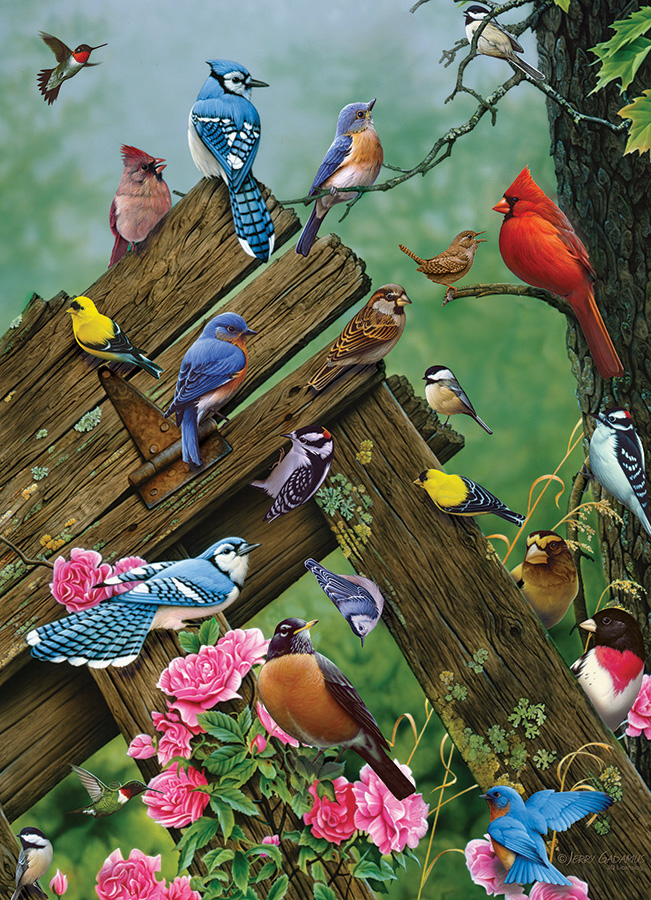 Birds of the Forest 1000 piece Cobble Hill Puzzle Co bird jigsaw