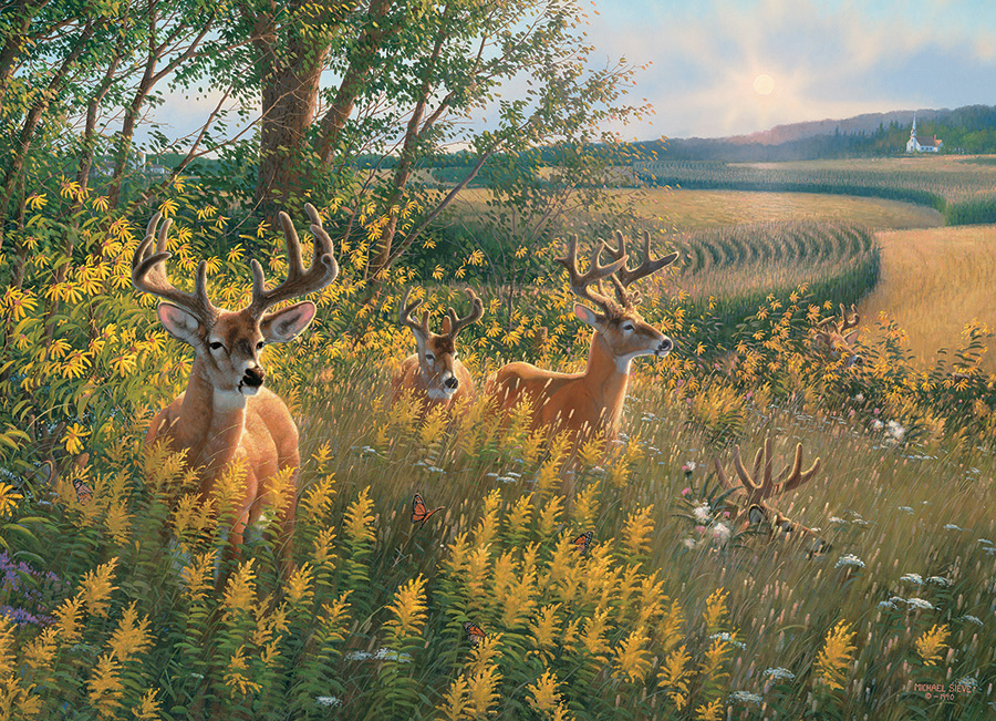Summer Deer 1000 piece Cobble Hill Puzzle Co nature jigsaw