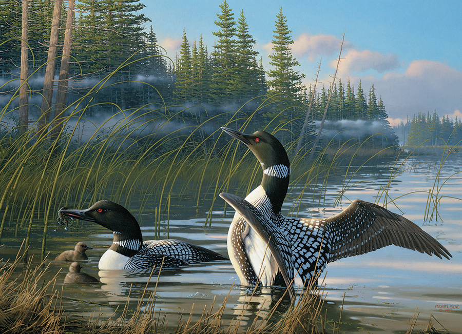 Common Loons - 1000 piece - Cobble Hill Puzzle Co - bird puzzle