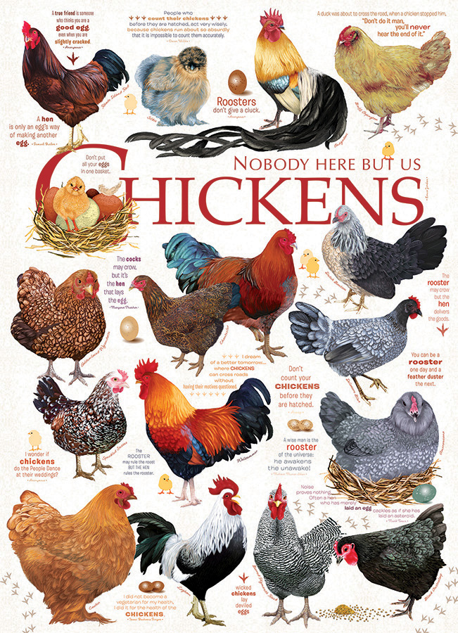 Chicken Quotes 1000 piece Cobble Hill Puzzle Co chicken jigsaw