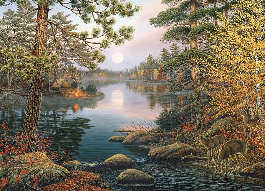 Deer Lake 1000 piece scenic by Cobble Hill