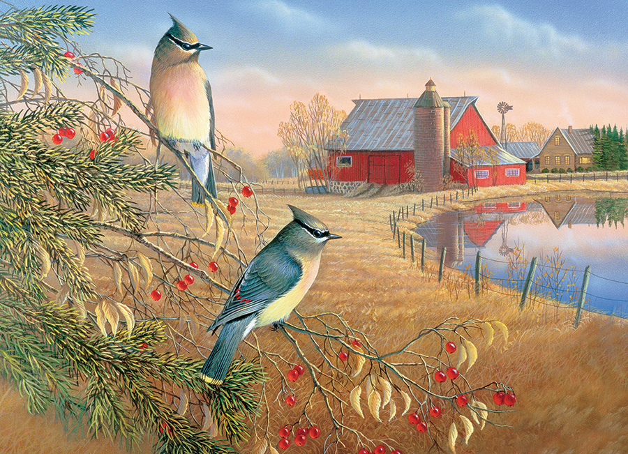 Cedar Waxwings - 1000 pc puzzle - Cobble Hill Puzzle Co