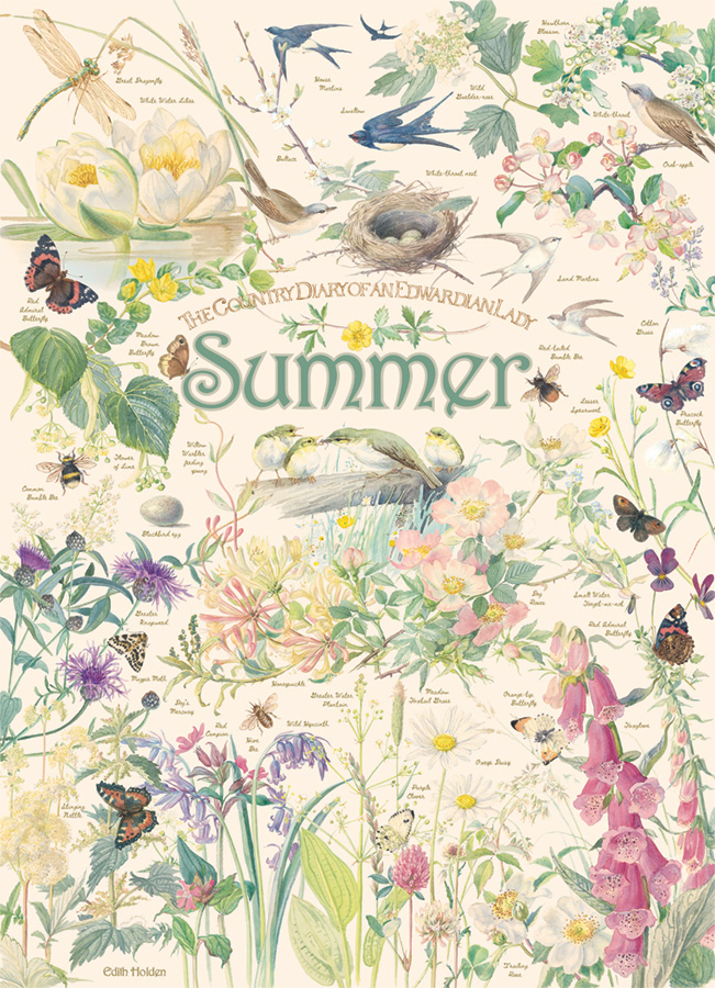 Country Diary: Summer - 1000 pc puzzle - Cobble Hill Puzzle Co