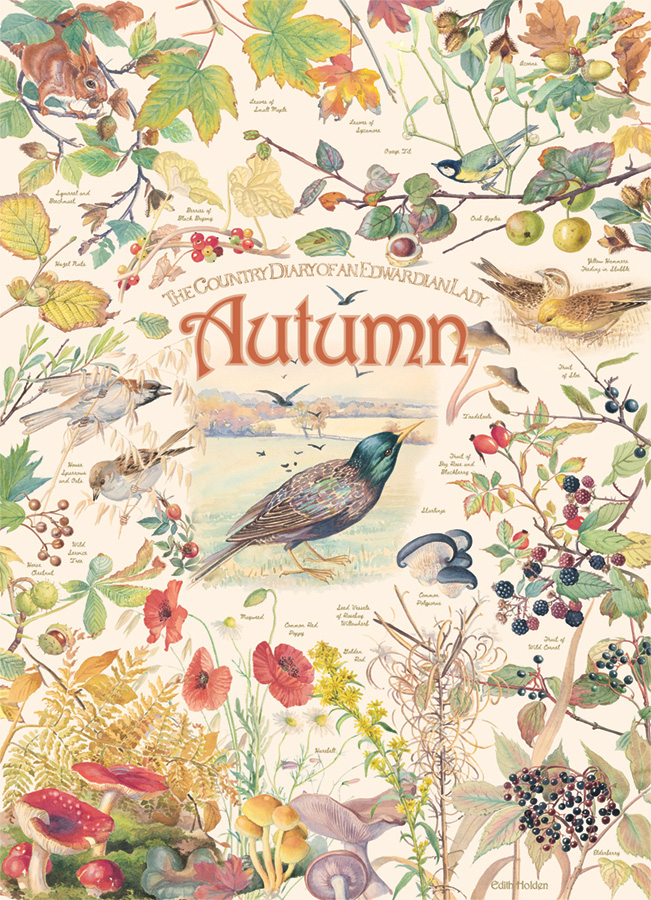 Country Diary: Autumn - 1000 pc puzzle - Cobble Hill Puzzle Co