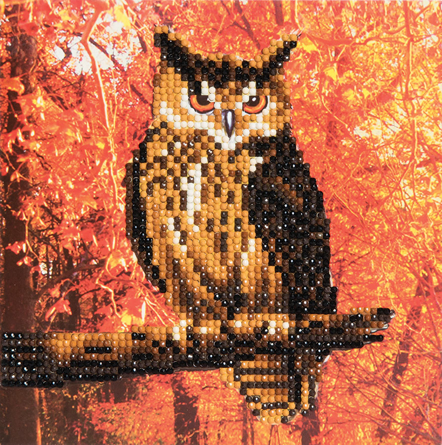 Crystal Art Card Kit Autumn Owl distributed by Outset Media