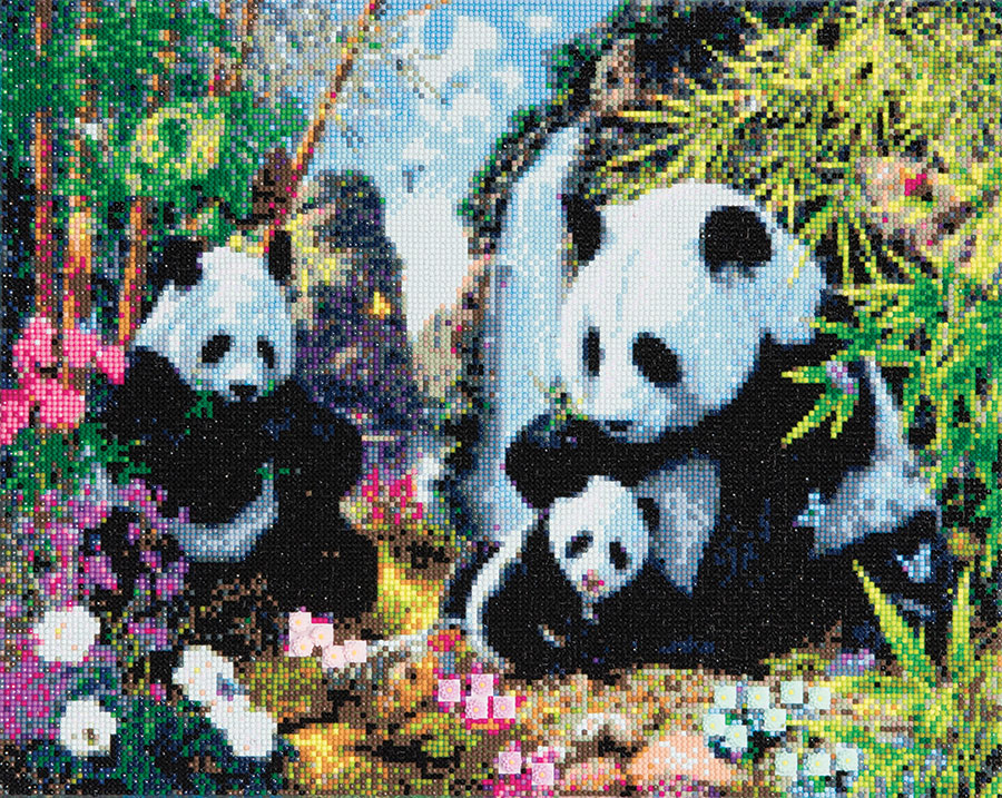 Crystal Art Large Framed Kit Panda Valley distributed by Outset Media
