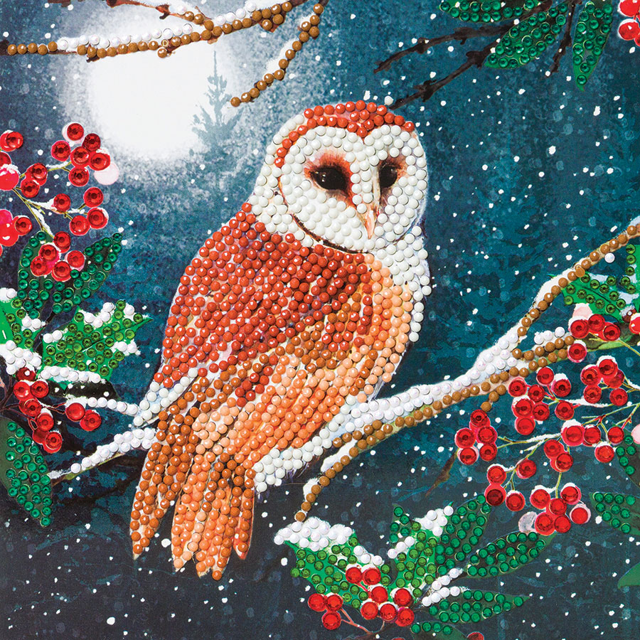 Crystal Art Card Kit - Barn Owl distributed by Outset Media