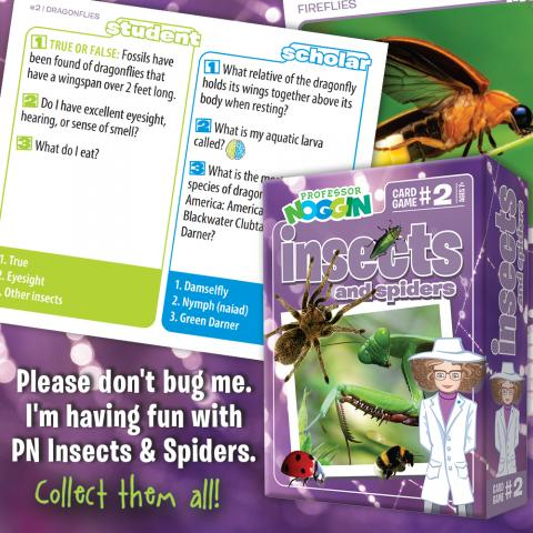 Professor Noggin Insects and Spiders sample cards