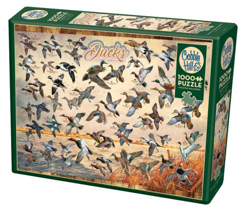 Ducks of North America 1000 piece puzzle by Cobble Hill